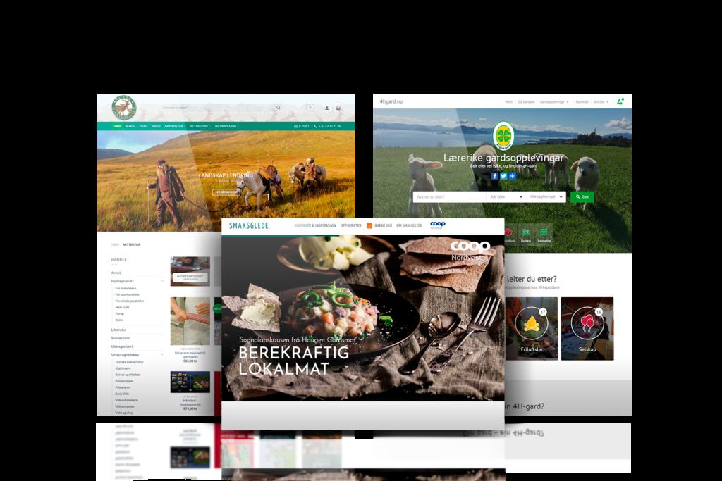 Webløsninger og nettsider - Florø - Vestland - Avent Digital